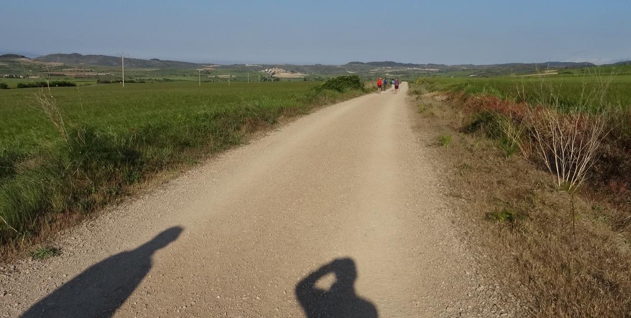 Tag 8, von Los Arcos nach Viana